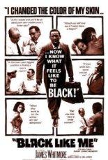 blacklikeme_poster